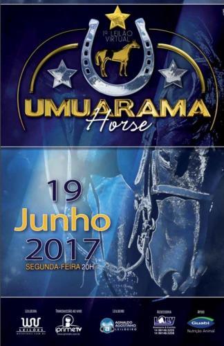 2° Leilão Virtual Umuarama Horse
