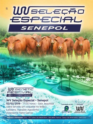 2º Leilão Virtual WV Seleção Especial - Senepol