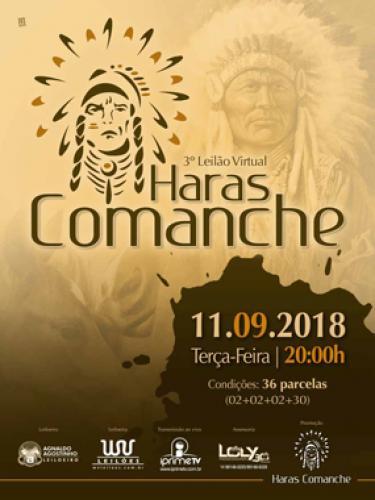 4° Leilão Virtual Haras Comanche