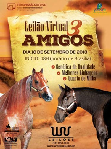 2° Leilão Virtual 3 Amigos