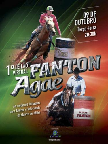 Leilão Virtual Fanton & Agae