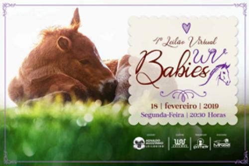 4° Leilão Virtual Babies WV
