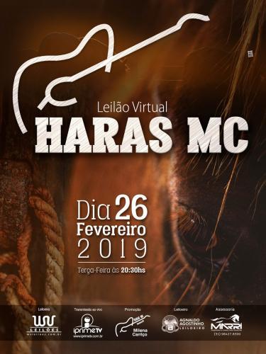 1° Leilão Virtual Haras MC