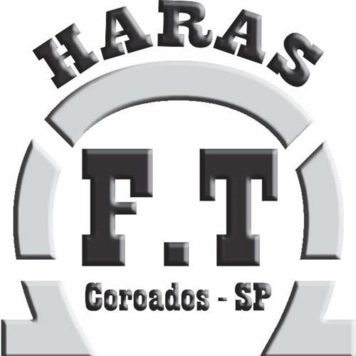 1º Leilão Virtual Haras FT