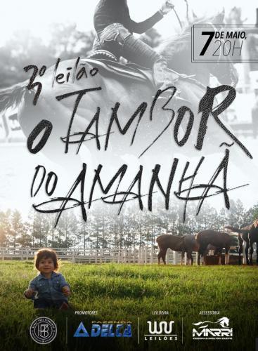 3º Leilão Fazenda Delta & Haras 3 Pinheiros - O Tambor do amanhã