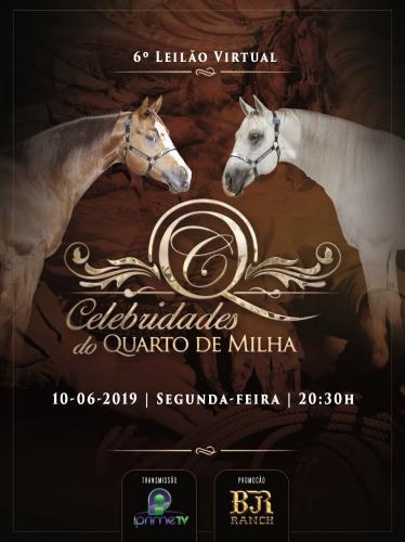 5° Leilão Virtual Celebridades do Quarto de Milha