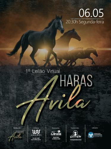 1º Leilão Virtual Haras Avila - A Casa do Leo Cath Bid