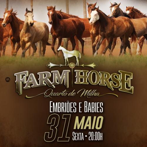 5° Leilão Farm Horse - Embriões e Babies
