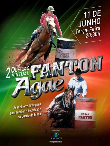 2° Leilão Virtual Fanton & Agae