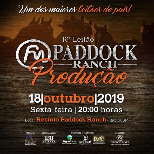 16º Leilão Paddock Ranch - PRODUÇÃO