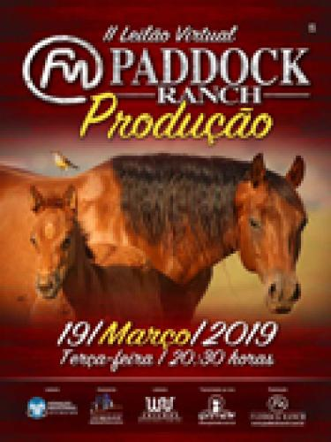 13º Leilão Virtual Paddock Ranch