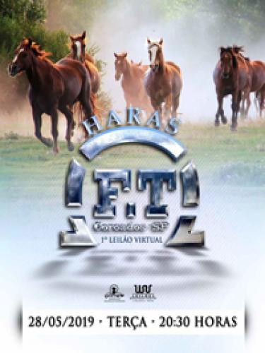 2º Leilão Virtual Haras FT