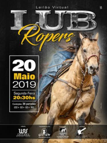 Leilão Virtual Lub Ropers