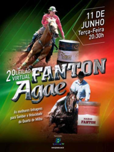 3º Leilão Virtual Fanton & Agae