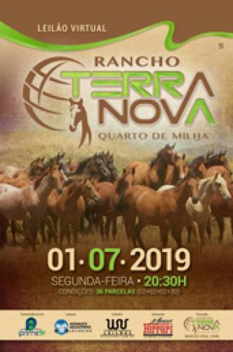 2º Leilão Virtual Rancho Terra Nova
