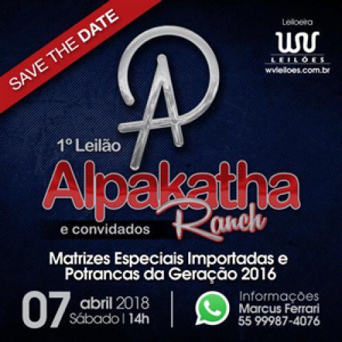 2º Leilão Alpakata Ranch