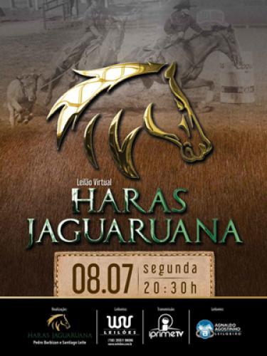 2º Leilão Virtual Haras Jaguaruana