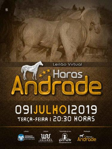 3º Leilão Virtual Haras Andrade