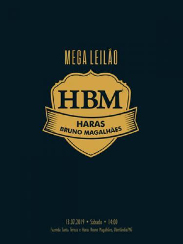 Mega Leilão Haras Bruno Magalhães