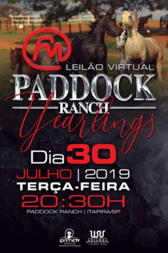 16º Leilão Virtual Paddock Ranch - Yearlings