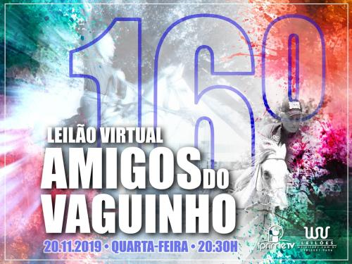 16º Leilão Virtual Amigos do VS