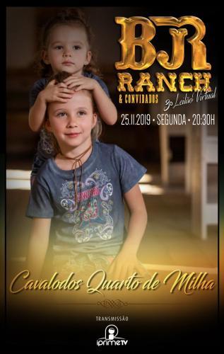 4º Leilão Virtual BJR Ranch