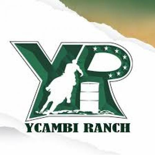 Leilão Virtual Ycambi Ranch