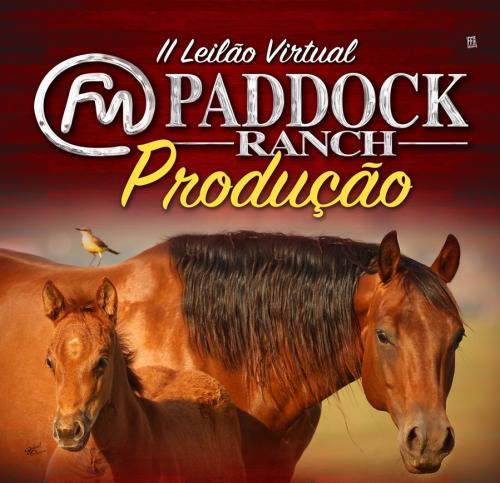 Leilão Paddock Ranch- Matrizes e Potras