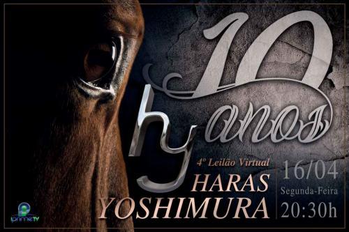 Leilão Virtual Haras Yoshimura