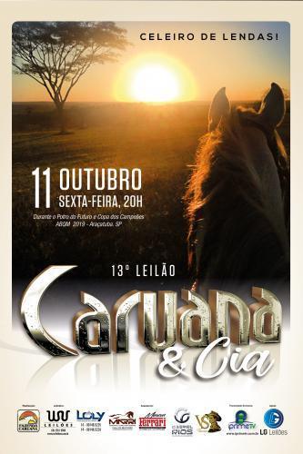 14º Leilão Caruana & Cia