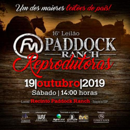 17º Leilão Paddock Ranch - Reprodutoras Importadas