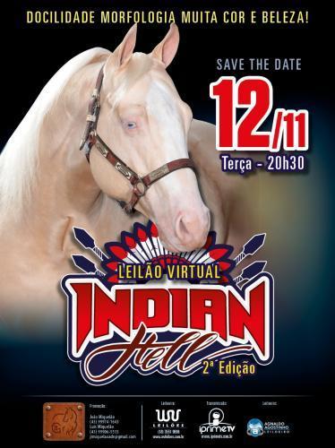 Leilão Virtual Indian Hell - 3º Edição