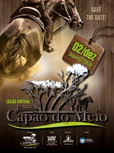 Leilão Virtual Rancho Capão Do Meio