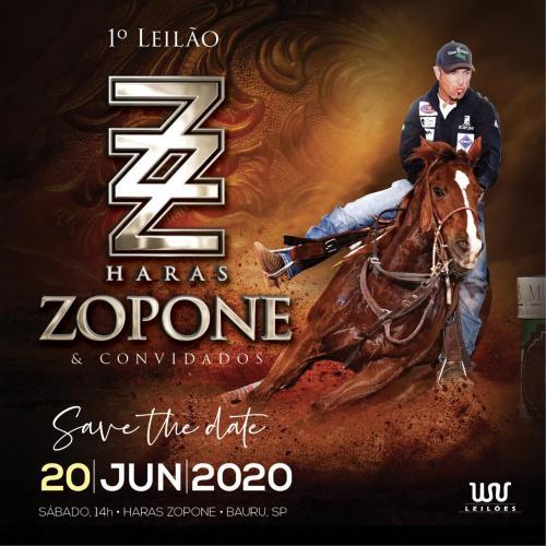 1º Leilão Haras Zopone