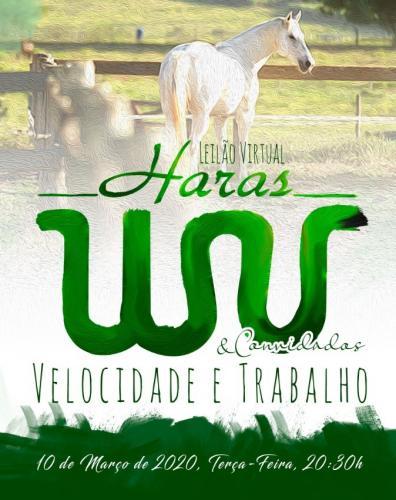 Leilão Virtual Haras WV e convidados - Velocidade & Trabalho.
