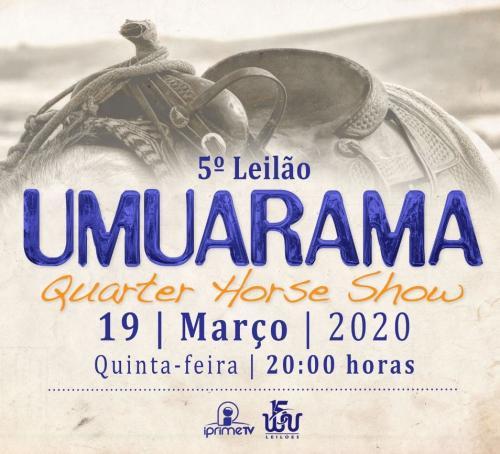 5º Leilão Umuarama Quarter Horse Show