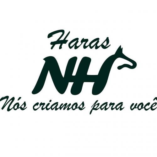 Leilão Virtual Haras NHP