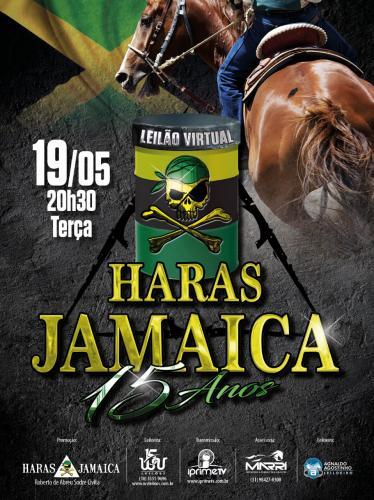 Leilão Virtual Haras Jamaica 15 anos