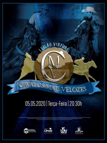 Leilão Virtual Haras CMV
