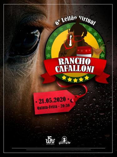 6º Leilão Virtual Rancho Cafalloni