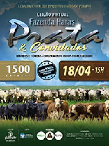 Leilão Virtual Fazenda Haras Prata & Convidados