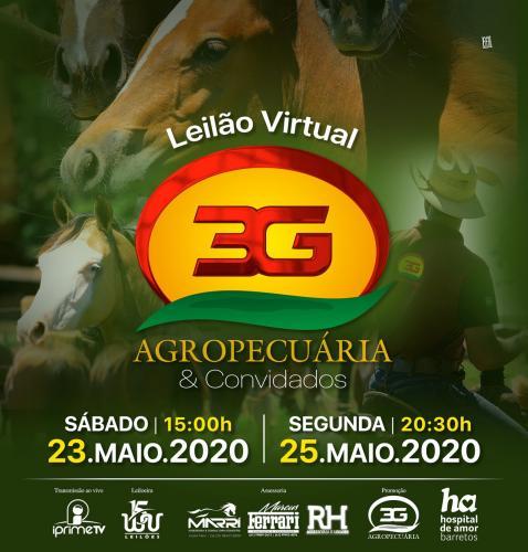 Leilão Virtual Agropecuária 3G & Convidados