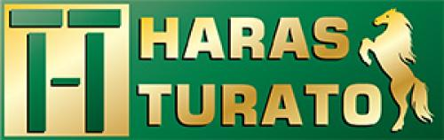 Leilão Virtual Haras Turato
