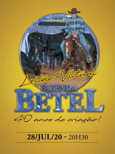 2º Leilão Virtual Fazenda Betel