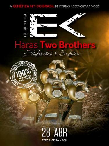 2º Leilão Virtual Haras Two Brothers - Embriões