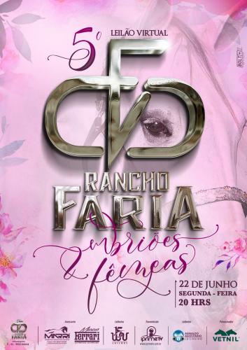 6º Leilão Virtual Rancho Faria