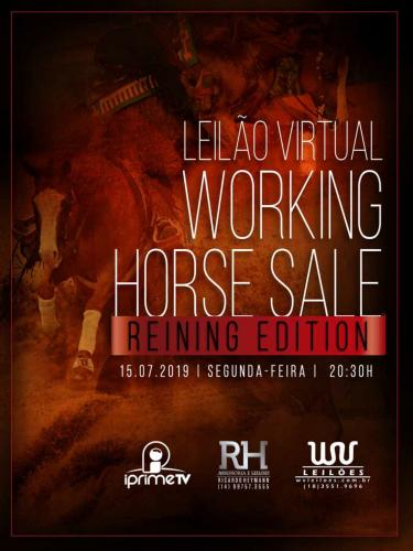 2º Leilão Virtual Working Horse Sale - Reining Edition