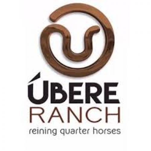 3º Leilão Ubere Ranch
