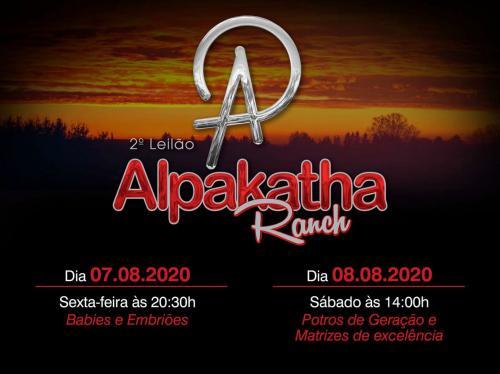 4º Leilão virtual Alpakatha Ranch - Babies e Embriões