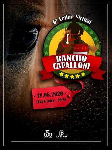 7º Leilão Rancho Cafalloni